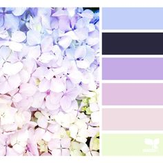 Spring ❤ liked on Polyvore featuring design seeds, filler, pictures, backgrounds and effect