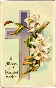 -CatnipStudioCollage-: Free Vintage Clip Art - White Orchids Easter Postcard