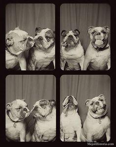 Una de esas cosas que siempre se recuerdan con cariño es entrar a un fotomaton con algún amigo o pareja para hacerte unas fotos tontas y divertidas,...