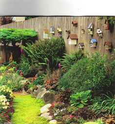 Bird Houses And Color For The Garden. Gate Design, Garden Gates, Design  Homes