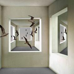 Compra obras de Arte Contemporáneo | Flecha