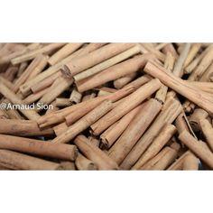 Partez à la découverte de la meilleure cannelle au monde, le bâton de cannelle de Madagascar.   Il va faire voyager votre cuisine.   #cannelle #recette #bâton Madagascar, Cinnamon Sticks, Gourmet, Face Powder, Counter Top, Kitchens