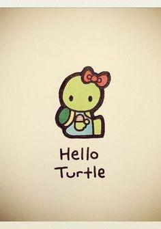 TurtleWayne2-338x480.jpg 338×480 pixels
