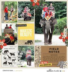 Elephant / Zoo Proje