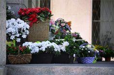 Local flower shop