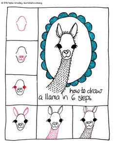 Learn to Draw a cute Llama in 6 steps : Learn To Draw