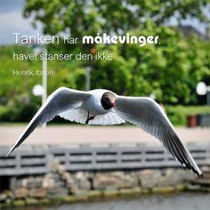 -Henrik Ibsen