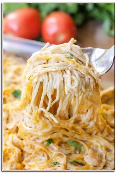 Easy Chicken Spaghetti recipe that is full of flavor and perfect for dinner. This recipe calls for chicken, spaghetti noodles, cream of chicken, salsa, sour cream and cheese making it the epitome of comfort food and a dinner recipe everyone will love! Chicken Spaghetti Recipes, Chicken Thigh Recipes, Easy Pasta Recipes, Chicken Salad Recipes, Crockpot Recipes, Easy Meals, Cooking Recipes, Healthy Recipes, Chicken Pasta