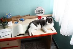 Weekly Wishes #20: Bedroom Slash Workspace Revamp - A Classic Notion