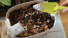 Mineral Mix für Würmer Beef, Food, Compost, Minerals, Meat, Essen, Meals, Yemek, Eten