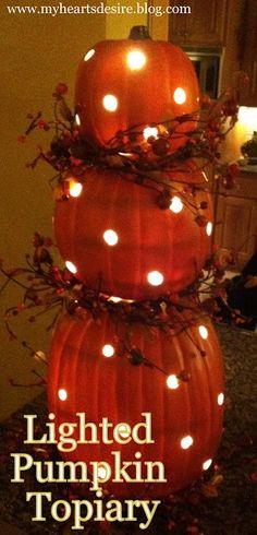So Cute!! Pumpkin Topiary with Lights DIY...I wonder if Jesse can make a pumpkin Dalek? @J E Villasenor