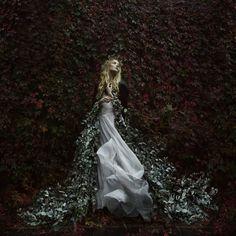 Bella Kotak Photography - In Bloom