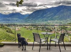 Ein Ausblick wie eine Bildtapete! Atemberaubend schön. Das ist unser Balkonview von der Gardensuite im Hotel Eschenlohe in Schenna in Südtirol. #Wiederunterwegs @schenna.scena  @hoteleschenlohe