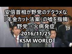 【KSM】安倍首相が野党のデタラメな「年金カット法案」の嘘を指摘 野党⇒火病発症 2016年11月25日