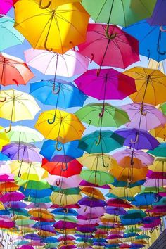 #Wallpaper#rainbow#colours#umbrellas Rainbow Wallpaper, Iphone Wallpaper, Brollies, Rainbow Colors, Colours, Cats, Umbrellas, Iphone 6, Wallpapers