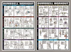 Exercise for bodybuilding (PHOTO) | sdasdas