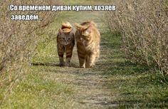 У каждого свои планы)