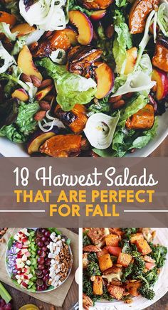 18 Fall Harvest Salads You Need In Your Life Right Now (some of these aren't vegan but most are)