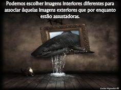 Podemos escolher imagens interiores...