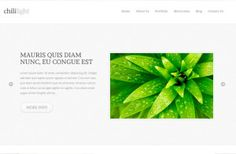 The Chililight premium WordPress theme is a amazing looking, custom and light personal blog and portfolio theme. The Chililight WP theme comes with eight pattern styles, gorgeous typography style, custom widgets and much more.