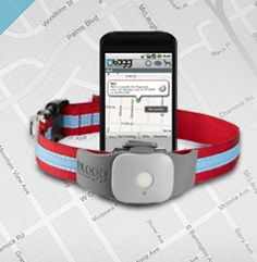 GPS for Pets