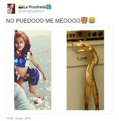 Funny Spanish Memes, Spanish Humor, Spanish Quotes, Good Night Sleep Well, Funny Images, Funny Pictures, Mexican Memes, Mood Instagram, Pinterest Memes
