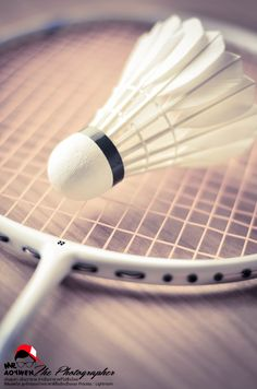 Badminton a spot that doesn't get enough recognition but is fun because it incorporates tennis and volleyball Badminton Photos, Badminton Sport, Badminton Racket, Tennis Racket, Badminton Birdie, Badminton Tournament, David Laid, Player Quotes, Bodybuilding