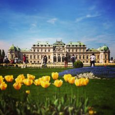 Vienna - Belvedere Castle // Wien - Schloss Belvedere Street Photography, Travel Photography, Austria, Dolores Park, Louvre, Mansions, House Styles, Building, Life