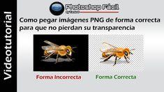 Como pegar imágenes Png sin fondo sin perder la transparencia #Photoshop