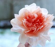 coffee filter flower