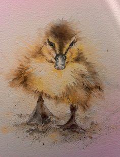 A showcase for my paintings Watercolor Bird, Watercolor Animals, Watercolour Painting, Watercolors, Animal Paintings, Animal Drawings, Cute Drawings, Cute Ducklings, Graphic Illustration