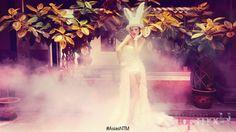 asias-next-top-model-rabbit