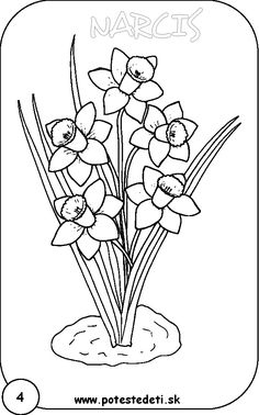 narcis Free Motion Embroidery, Embroidery Patterns Free, Embroidery Art, Quilt Patterns, Embroidery Designs, Flower Drawing Tutorials, Drawing Projects, Flower Coloring Pages, Colouring Pages