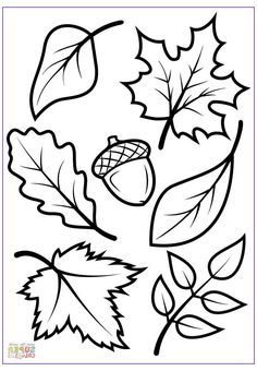 Fall Leaves Coloring Pages, Fall Coloring Sheets, Leaf Coloring Page, Coloring Pages To Print, Free Printable Coloring Pages, Coloring Pages For Kids, Free Coloring, Adult Coloring, Kids Coloring