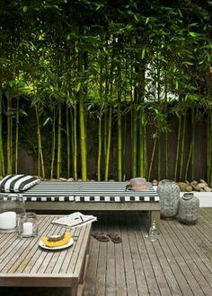 Jardinera bamboo