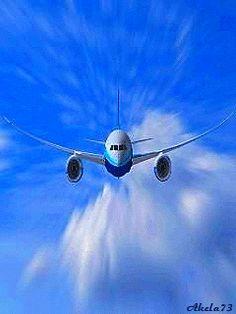 троице-сергиева картинка самолет в небе анимация только из-за шумихи