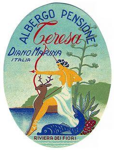 albergo teresa diano marina riviera fiori italy