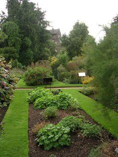Chelsea physic garden 4