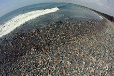 Huacho en playa Centinela