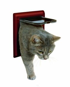 Trixie 38603 2-Way Cat Flap Brown ** Stop everything and read more details here! : Furnitures that cats love