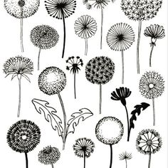 Ideas drawing flowers doodles zentangle for 2019 Zentangle Patterns, Embroidery Patterns, Print Patterns, Zen Doodle Patterns, Doodles Zentangles, Diy Embroidery, Doodle Drawings, Art Inspo, Painting & Drawing