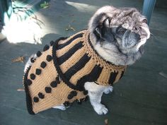 Ravelry user Peach Kraft created an awesome Dalek dog sweater pattern. This distinguished pug might just be the cuddliest Dalek we've ever seen. Doctor Who Knitting, Doctor Who Crochet, Dalek Costume, Knitting Patterns Free Dog, Free Knitting, Free Pattern, Dog Sweater Pattern, Dog Costumes, Costume Ideas