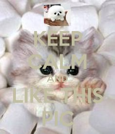 KEEP CALM AND LIKE THIS PIC