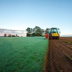 Another day - another #harvest. All #newlawns are delivered #fresh, just hours after being harvested at our #farm. #twinviewturf #turffarm #turf #grass #lawnsolutionsaustralia #legend #sirwalter #nullarborcouch #nature #naturelovers #bluesky #lawn #loveyourlawn