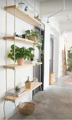 Hanging Bookshelves, Diy Hanging Shelves, Plant Shelves, Suspended Shelves, Wall Shelves, Diy Shelving, Book Shelves, Large Shelves, Storage Shelves