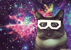 Cats and outer space are meant to be together. not literally of course because its too cold for cats in space...