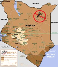 Malaria & mosquitoes - Do your best to prevent bites and take your malaria pills. If you are only traveling to Nairobi or to the highlands above 2,500 m (8,200 ft), your risk is between low and none. Otherwise, if you visit any game park, you are at risk.