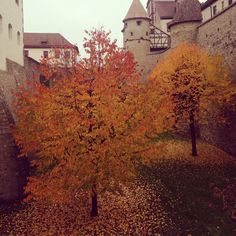 Wurzburg!!