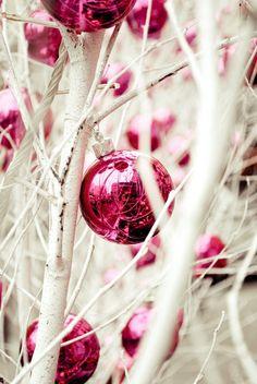 Li trovo stupendi questi semplicissimi rami imbiancati...  S'io fossi il mago di Natalefarei spuntare un albero di Natalein ogni casa, in ogni appartamentodalle piastrelle del pavimento,ma non...