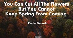 60+ Pablo Neruda Quotes
